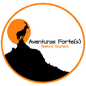 Aventuras Forte(s) | Turismo de Natureza